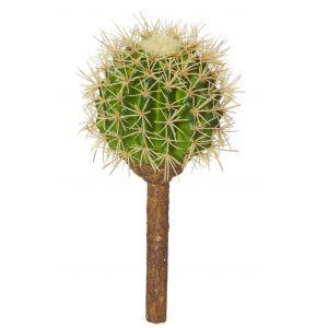 Rogue Barrel Cactus Green 10x10x23cm