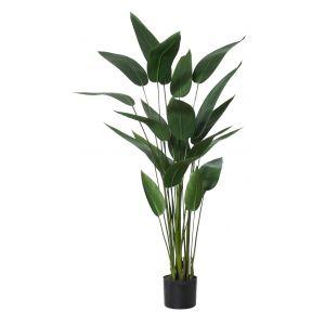 Rogue Sky Bird Plant Green 80x80x120cm