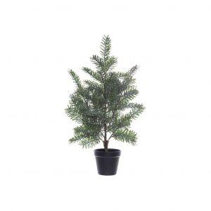 Rogue Blue Spruce Tree-Garden Pot Grey Green/Black 40x40x64cm