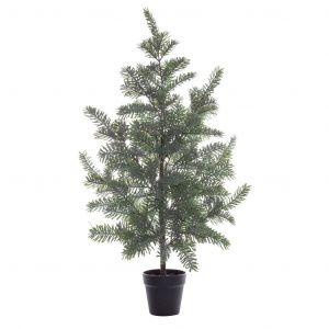 Rogue Blue Spruce Tree-Garden Pot Grey Green/Black 60x60x96cm