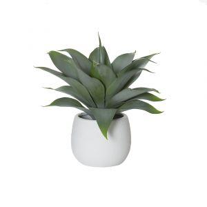 Rogue Agave-Tub Pot Green/White 34x32x32cm