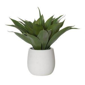 Rogue Agave-Tub Pot Green/White 51x52x50cm