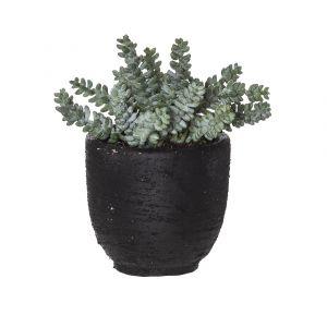 Rogue Sandflower-Orson Pot Green/Black 18x16x20cm