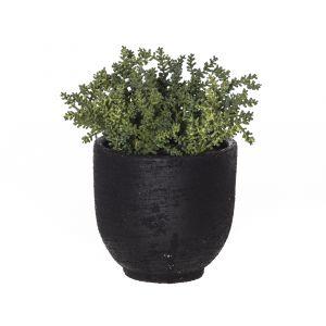 Rogue Senico-Orson Pot Green/Black 20x20x23cm