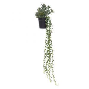 Rogue Flat Echeveria Garden-Garden Pot Green/Black 16x16x65cm