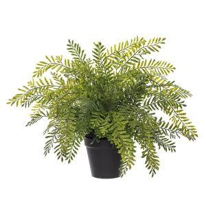 Rogue Lace Fern-Garden Pot Green/Black 44x48x37cm