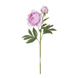 Rogue Peony Stem Pink 22x18x64cm