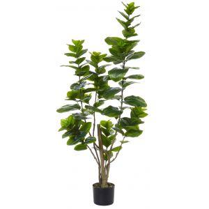 Rogue Stella Magnolia Bush Green/Black 50x40x138cm