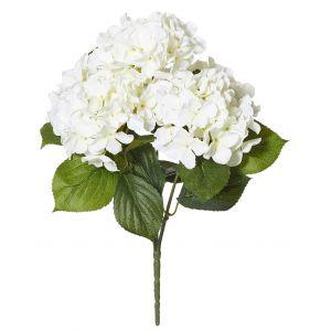 Rogue Hydrangea Bush White 34x34x46cm