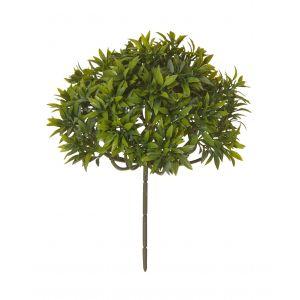 Rogue Tea Leaf Bush Green 20x20x26cm