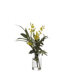Rogue Wattle Mix-Specimen Bottle Yellow/Glass 22x22x35cm