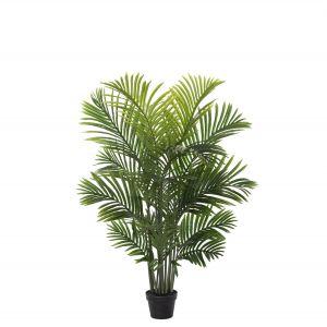 Rogue Areca Palm Tree-Garden Pot Green 75x75x115cm