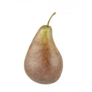 Rogue Pear Bartlet Brown 7x7x13cm