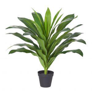 Rogue Dracaena-Garden Pot Green/Black 55x55x60cm
