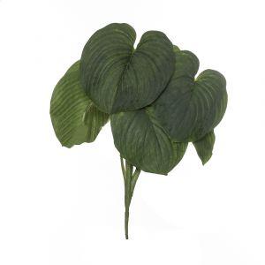 Rogue Giant Hosta Plant Grey/Green 45x35x66cm