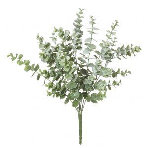 Rogue EucalyptusBush Grey Green 30x30x44cm