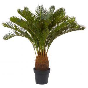 Rogue Cycas Plant Green 76x76x93cm