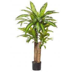 Rogue Happy Plant-Garden Pot Green/Black 70x60x110cm