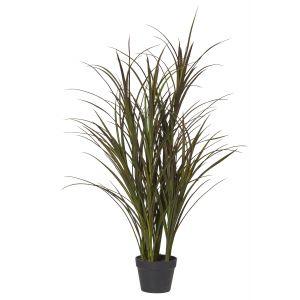 Rogue Grass Yucca Plant Green 80x80x120cm