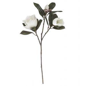 Rogue Magnolia Flower & Leaves White 40x30x80cm