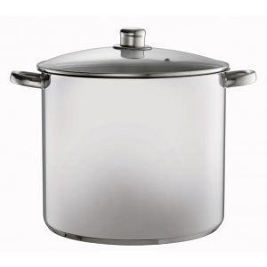 Davis & Waddell Stock Pot with Glass Lid Stainless Steel/Clear 30x25x39cm/D30cm/16L
