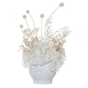 Rogue Preserved Hydrangea Mix-Brice Pot White/White 34x23x42cm