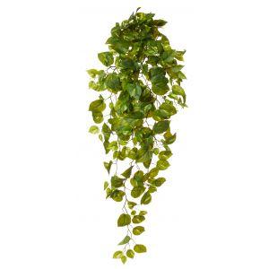 Rogue Pothos Hanging Bush Green 52x35x114cm
