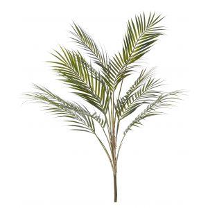 Rogue Phoenix Palm Green 50x50x90cm