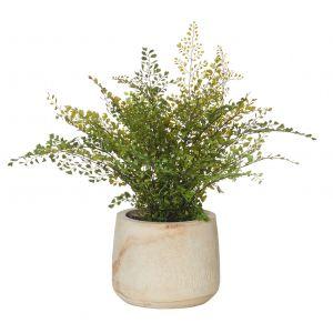Rogue Maiden Hair Stump-Dansk Pot Green/Natural 60x55x56cm