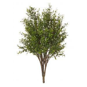 Rogue Boxwood Bush Green 30x30x61cm
