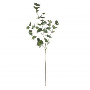 Rogue Eucalyptus Spray Grey Green 40x5x107cm