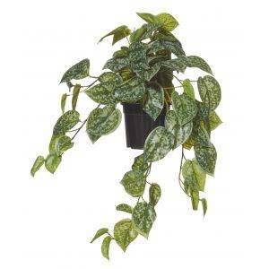 Rogue Aluminium Hanging-Garden Pot Green/Black 32x30x50cm