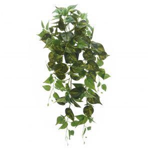 Evergreen by Rogue EG Phothos Hanging-Garden Pot Green 40x40x80cm