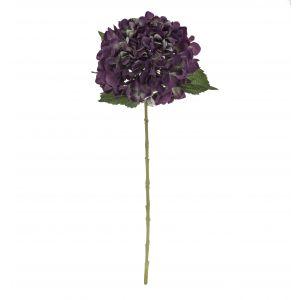 Rogue Hydrangea Stem Green/Purple 20x20x65cm