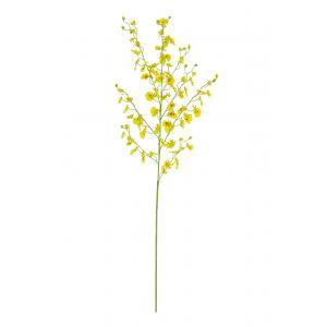 Rogue Dancing Orchid Yellow 35x20x95cm