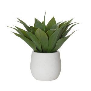 Rogue Agave-Tub Pot Green/White 36x36x37cm