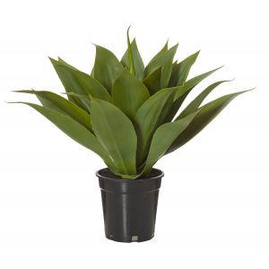 Rogue Agave-Garden Pot Green/Black 50x50x45cm