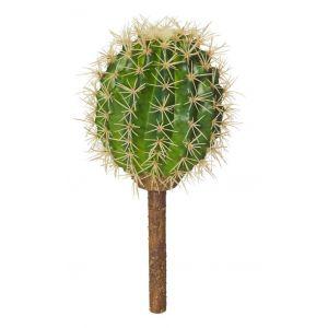 Rogue Barrel Cactus Green 12x12x30cm