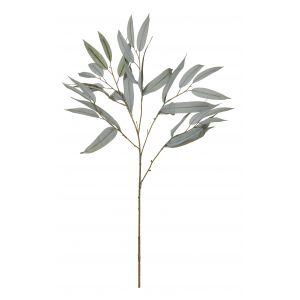 Rogue Eucalyptus Spray Grey Green 45x25x74cm
