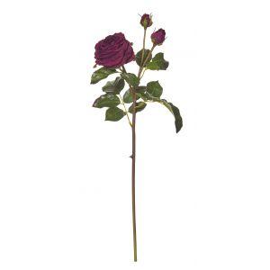 Rogue Cambridge Rose Spray Burgundy 20x20x55cm