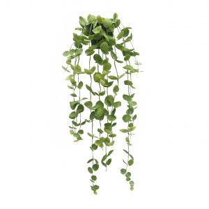 Evergreen by Rogue EG Coin Leaf Hanging-Garden Pot Green 30x30x90cm
