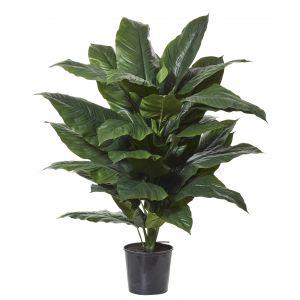 Rogue Giant Spathiphyllum-Garden Pot Green/Black 78x73x128cm