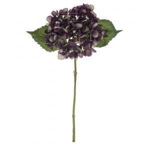 Rogue Hydrangea Stem Green/Purple 28x16x45cm