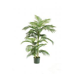 Rogue Cane Palm Green 80x80x152cm