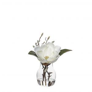 Society Home (SOC) Magnolia Bud Spray-Adina Vase White/Glass 27x24x27cm