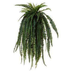 Rogue Boston Fern-Garden Pot Green/Black 100x100x150cm