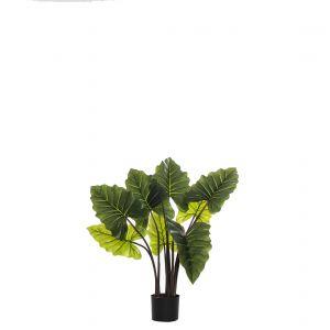 Rogue Alocasia Plant-Garden Pot Green 100x90x80cm