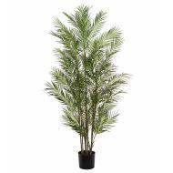Rogue Black Label Phoenix Palm-Garden Pot Green 55x55x183cm