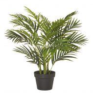 Rogue Areca Palm Tree-Garden Pot Green 60x60x65cm