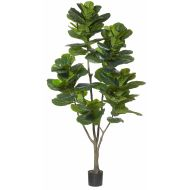 Rogue Giant Fiddle Tree Green 100x100x210cm